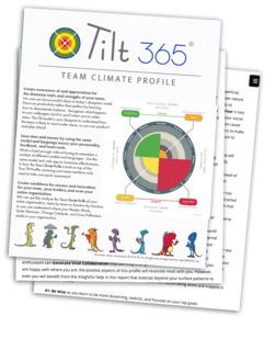 Team Climate Profile